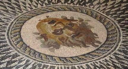 Musei ascoli piceno